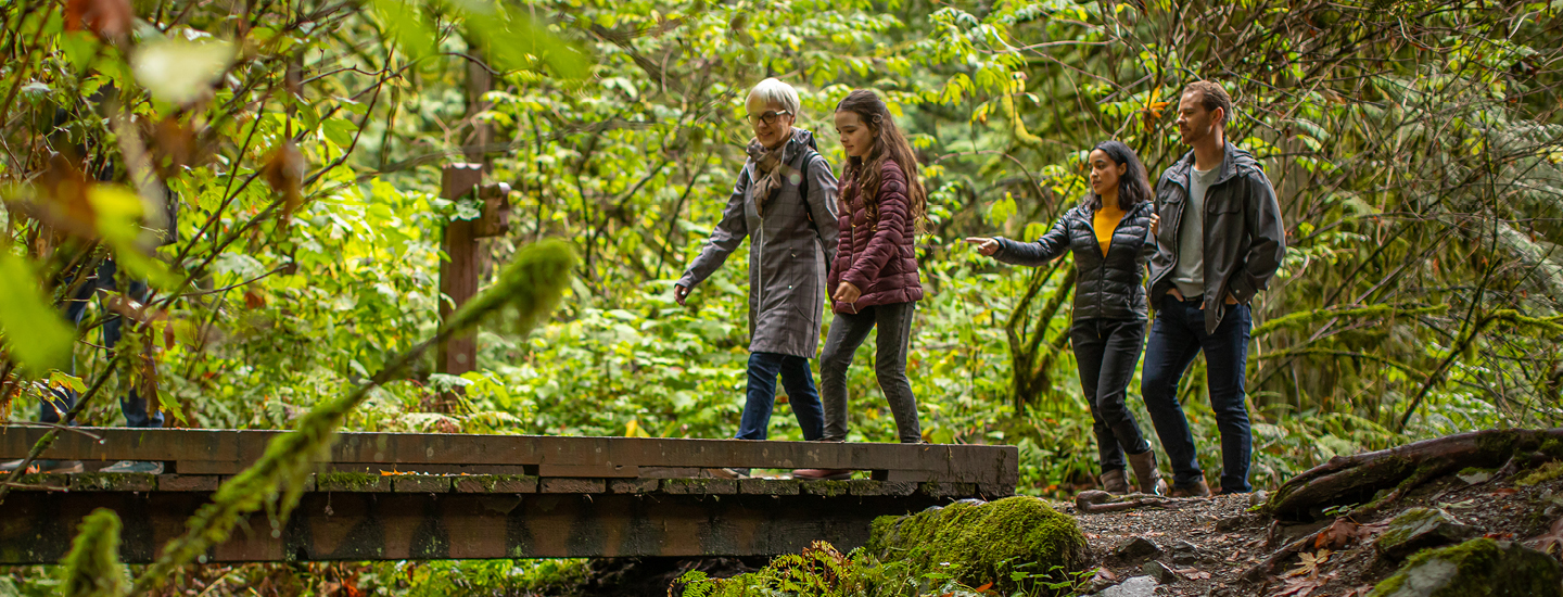 People walking in a forest on a trail.