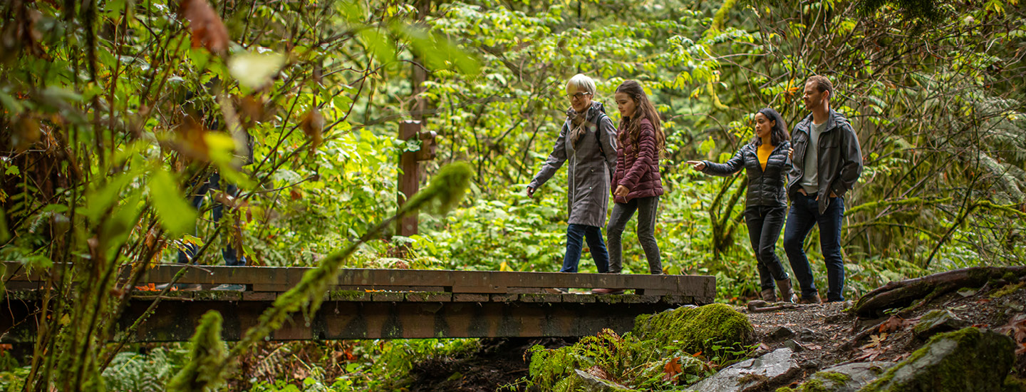A family walking over a footbridge along a forest trail. (20-064.18)