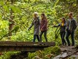 People walking across bridge in a forest.