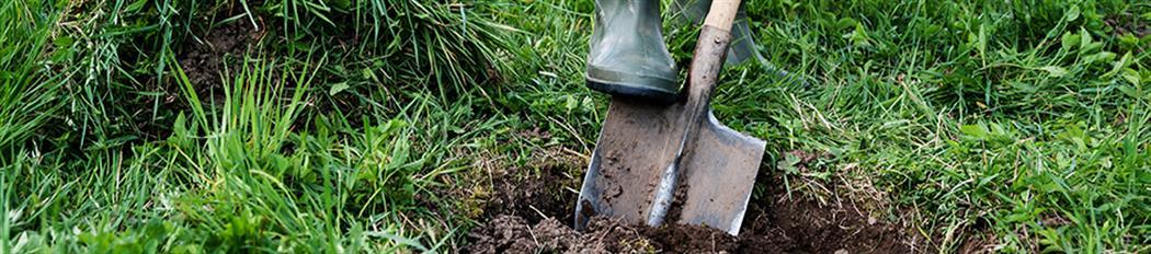 Digging-Shovel-477718258-940px