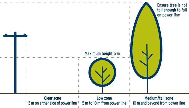 21-036.2_TreeTrimPlant_Diagram-775x772