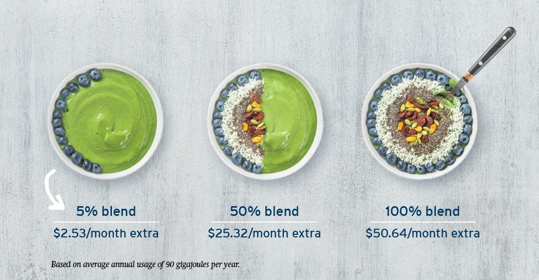 Three bowls of breakfast smoothies showing the price difference per month between three different RNG blends. 5 per cent costs $2.63 extra, 50 per cent costs $26.25 extra and a 100 per cent blend cost $52.50 extra per month (18-150.6)
