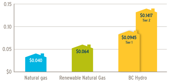 Affordable Renewable Natural Gas options